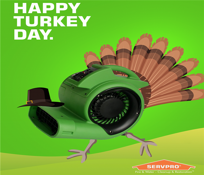 turkey with a servpro air cleaner as a body