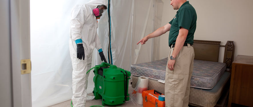 Brookfield, CT mold removal process